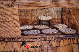 انواع کشک در بازار ایران